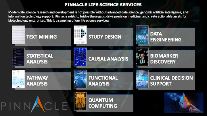 Pinnacles Services Overview